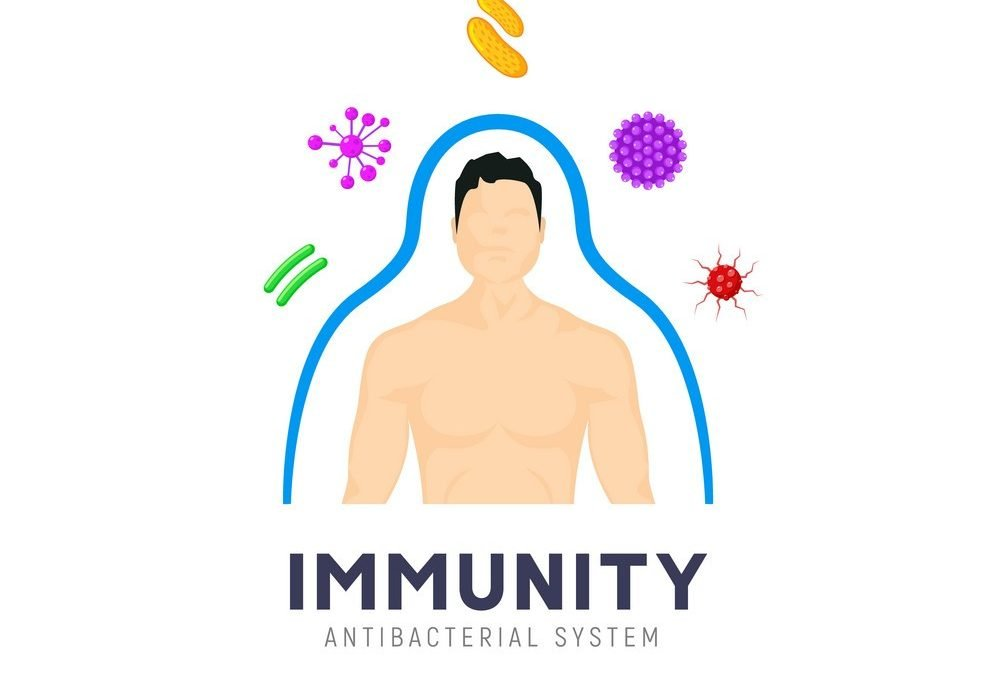 How to improve your immune system in order to fight COVID-19
