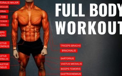 The Optimum Workout Formula