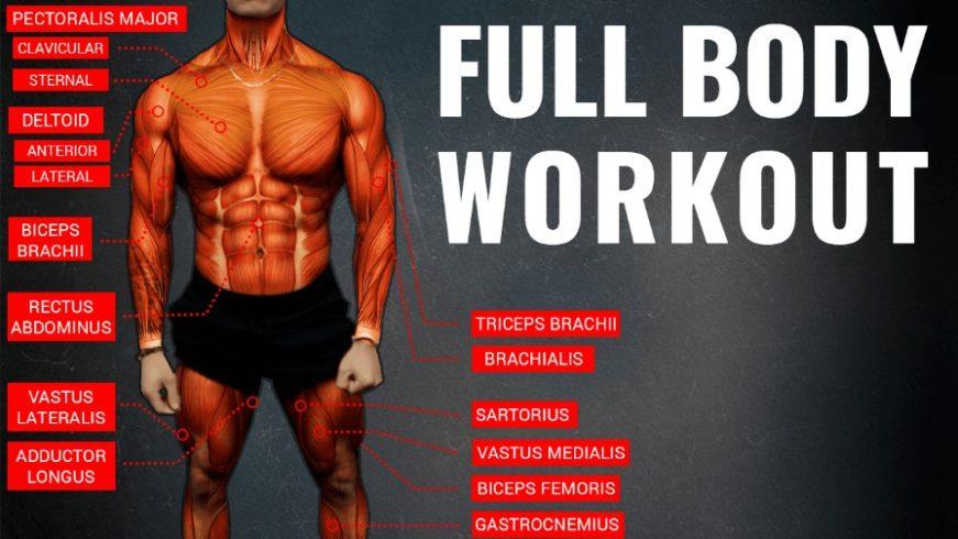 The Optimum Workout Formula